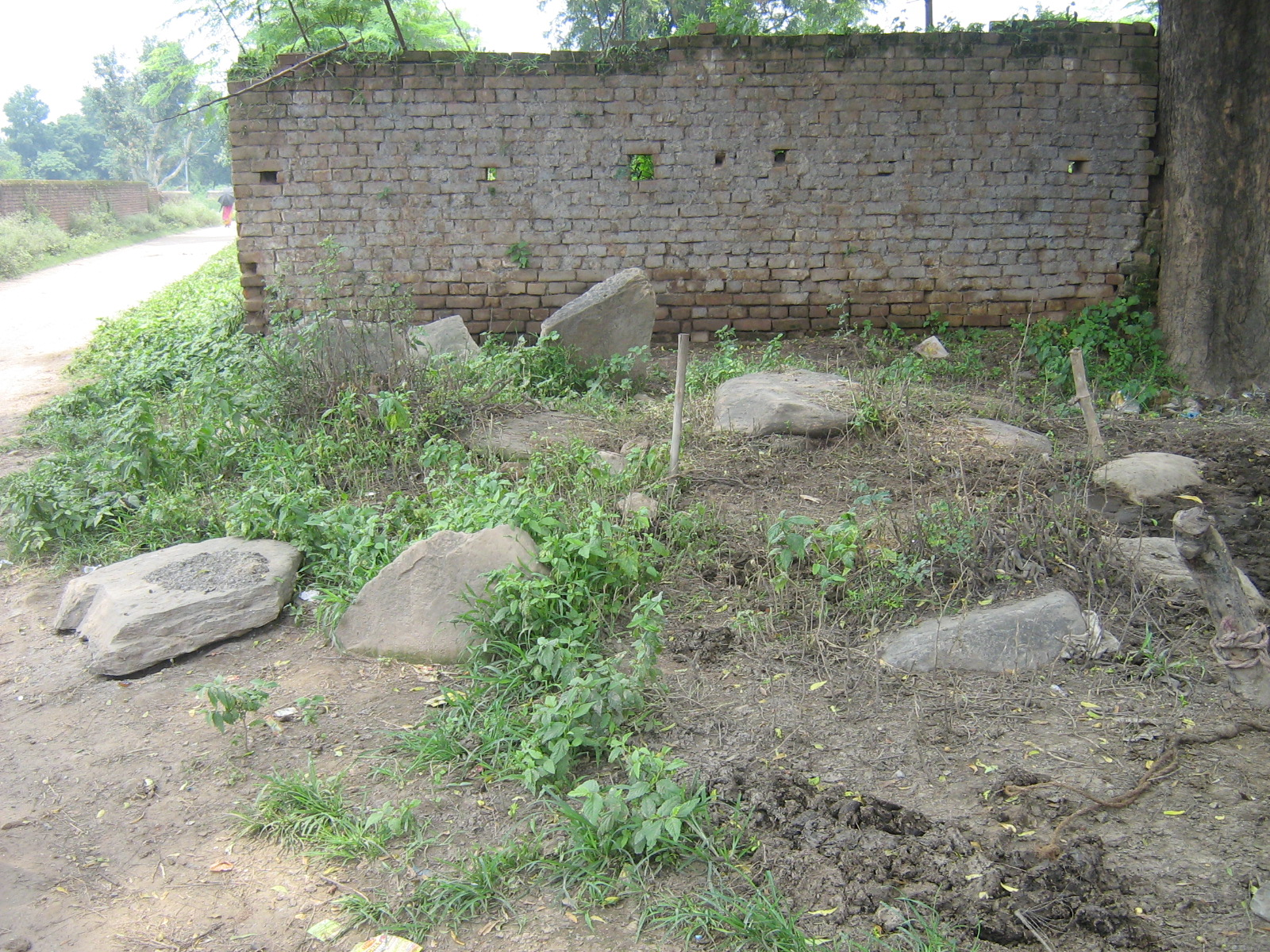 Megaliths of Jainagar Patratu Ramgarh