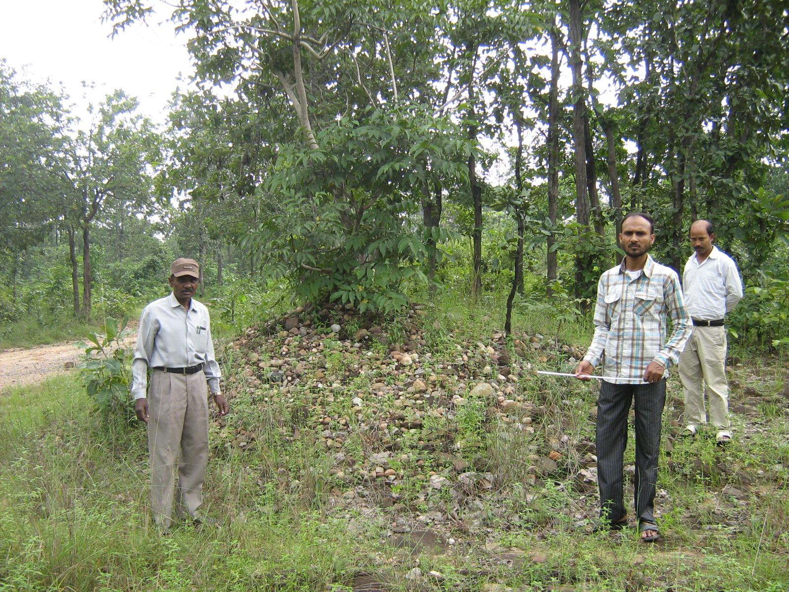 Megalith (Stone craine) of Janiyamara Village Gola Ramgarh