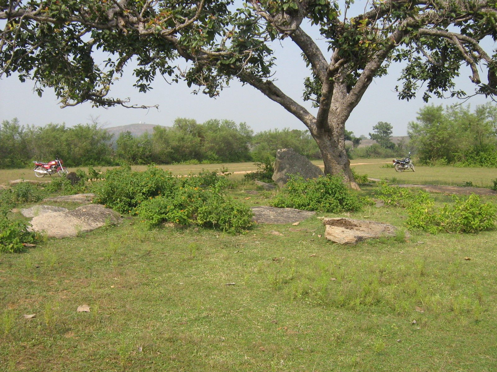 Megaliths of Siru village Ramgarh
