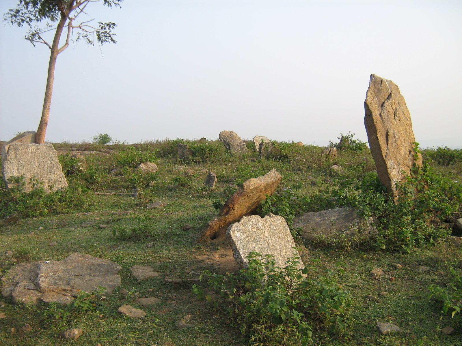 Megaliths of Honhey Village Ramgrh