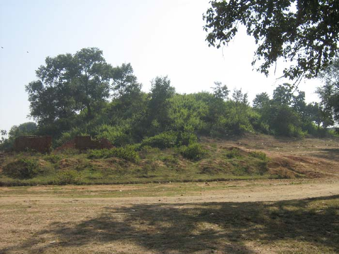 Mound of Raja Bandh Chitarpur